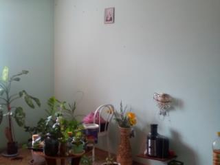 Продажа квартир: 1-комнатная квартира, Алтайский край, Новоалтайск, ул. Космонавтов, 15, фото 1