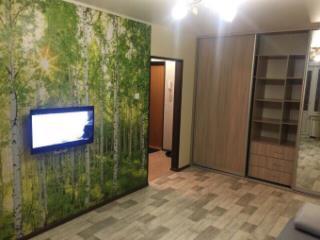 Снять 1 комнатную квартиру по адресу: Санкт-Петербург пр-кт Коломяжский 20