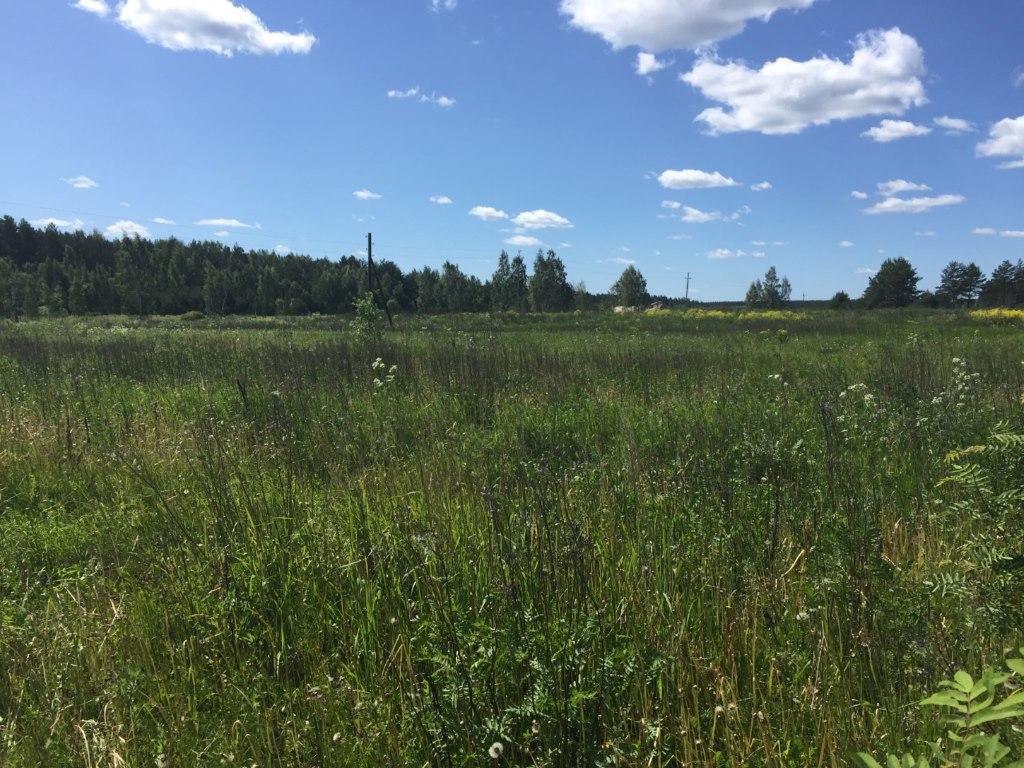 длительное пользование земельным участком